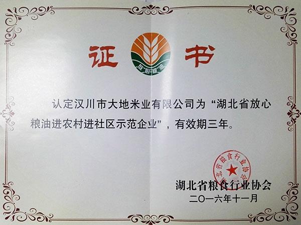 湖北省放心粮油进农村进社区示范企业