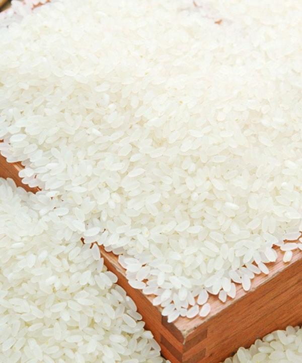 虾稻生态米1